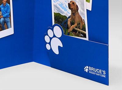Bruce's Doggy Day Care Presentation Pack