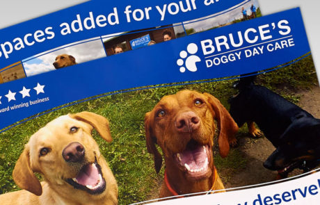 Bruce's Doggy Day Care Promotional Material